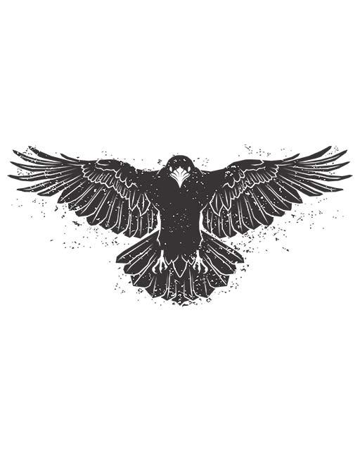 corvo e sua simbologia